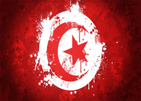 الإخطبوط العلماني تونس 710512102015123833.jpg