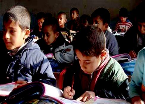 نشاط التعليم الشيعي النامي العراق 825092017124121.png