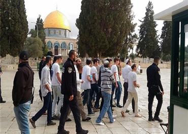 المئات المحتلين يقتحمون المسجد الأقصى 152908082019031328.jpeg