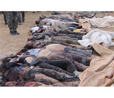 خسائر فادحة صفوف داعش 152930112014040444.jpg