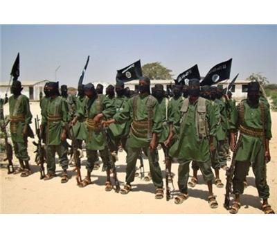 غارات أمريكية الصومال 152930122014034402.jpg