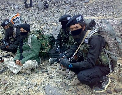 إيران تهدد بإرسال قوات الأراضي 2010218.jpg