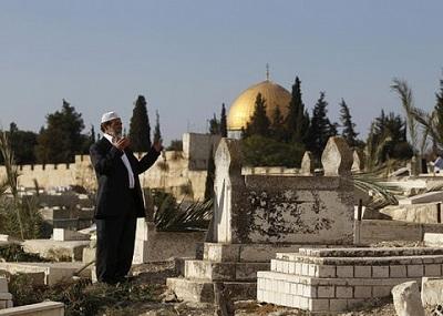 أعمال لبناني مقيم يريد إنشاء 2010950.jpg