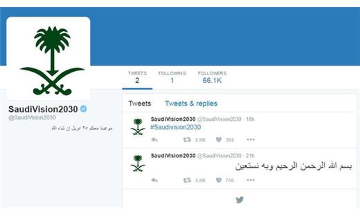 إطلاق الحساب الرسمي «الرؤية السعودية 733722042016024837.jpg